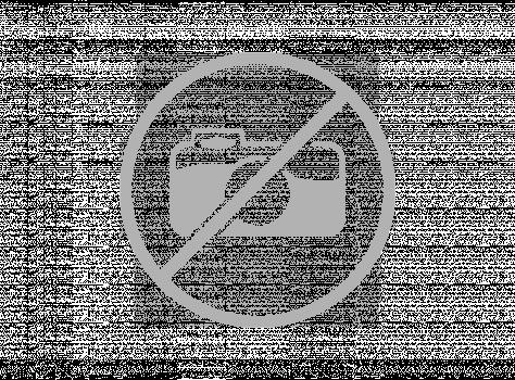 АСТ Пиростикер 15